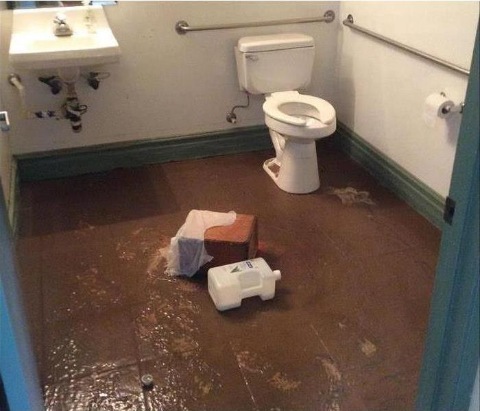 Water Damage 5 Signs You Need To Replace Your Toilet
