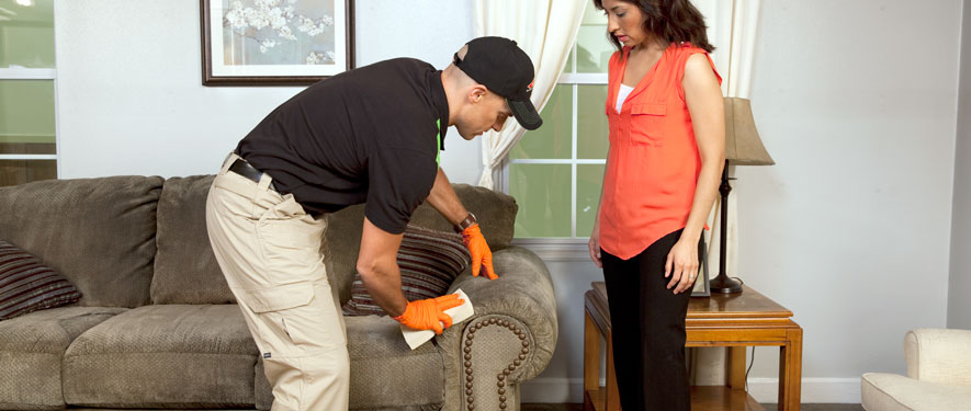 Spring Valley, CA carpet upholstery cleaning